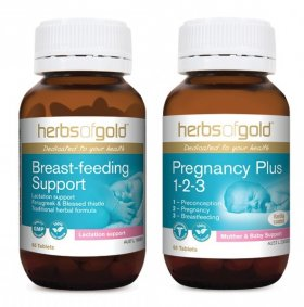 BREAST FEEDING SUPPORT & PREGNANCY PLUS 1-2-3