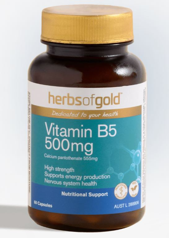 HERBS OF GOLD VITAMIN B5 500mg 60caps